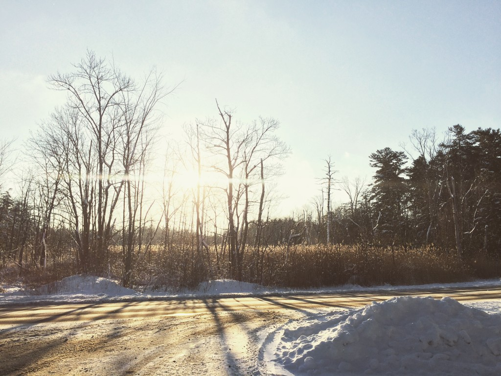 Lenox Snow